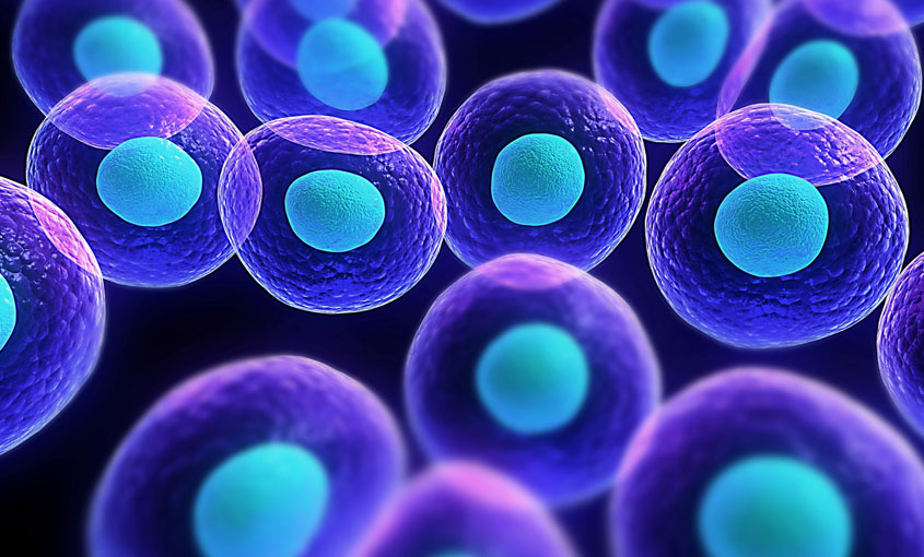Cell Biology (Orientation) course image